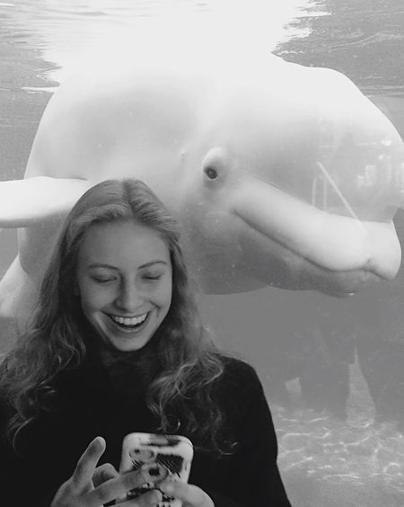 Couldn't stop laughing! The beluga looked at my phone! 😂 FUNNY ANIMALS Beluga Whale Marine Biology Belugawhale Cute