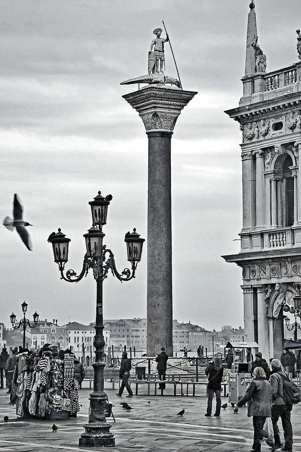 VENÈCIA Tourism Sky Outdoors Travel Destinations Water Day Vacations Statue Large Group Of People Sculpture Architecture City People Gondola - Traditional Boat Piazzasanmarco Piazza San Marco Venezia Piazza San Marco Venice,Italy Venice, Italy The Street Photographer - 2017 EyeEm Awards EyeEmNewHere The Architect - 2017 EyeEm Awards Place Of Heart EyeEm Selects