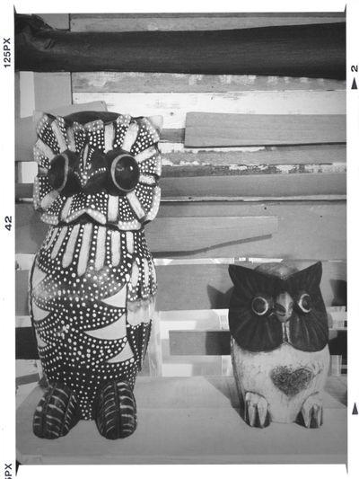 Owls Art Museum