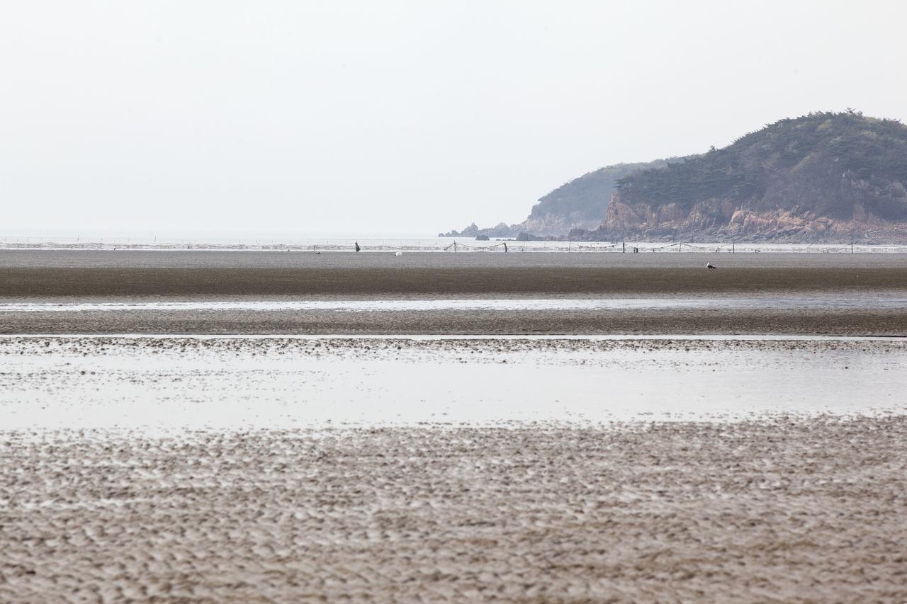 Beautiful stock photos of south korea, Beach, Calm, Coastline, Copy Space