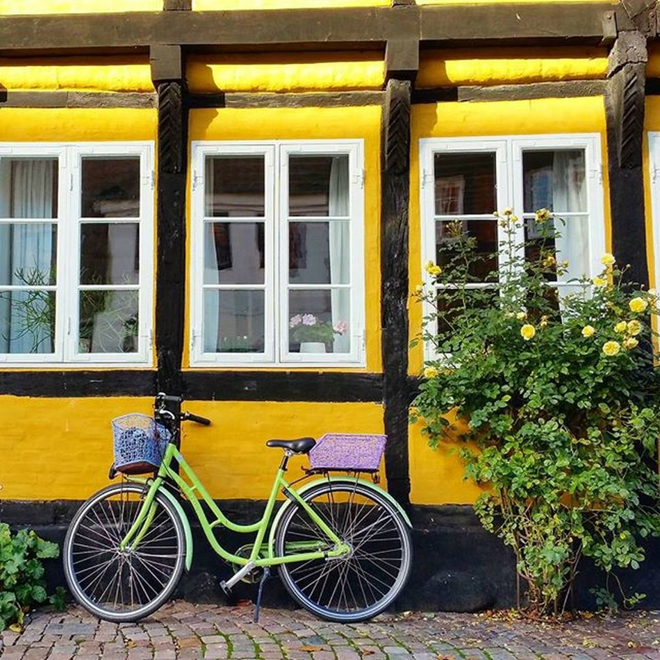 Danish Hipster-Cycle Idyll 😀🚲🌻 Bicycle Cycling Mood Hipster Color Instacycle Bike Bikelove Fahrrad Fahrradfahren 😚 😍❤️ Ribe Denmark Yellow Vintage