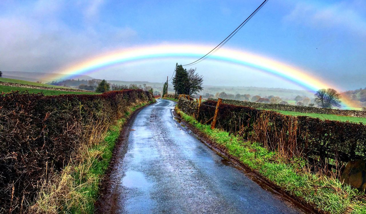 Swinithwaite Yorkshire North Yorkshire North Yorkshire Moors Yorkshire Dales Rainbow Perfect Rainbow Countryside Lane Hedgerows Cables Rural Tarmac Beautiful Nature Fence Fields Trees Flying High No People Beauty In Nature