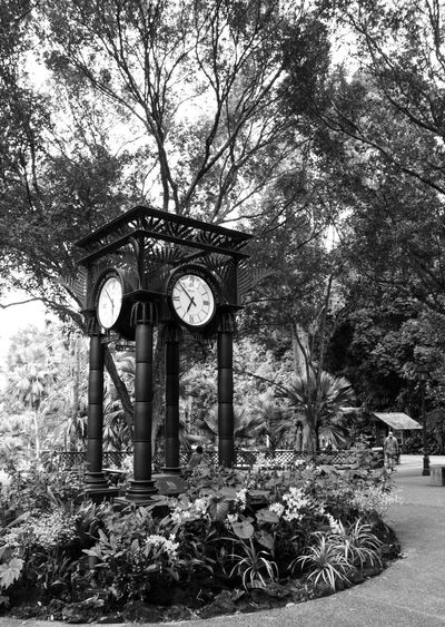 Time pass time short Clock Outdoors EyeEmNewHere