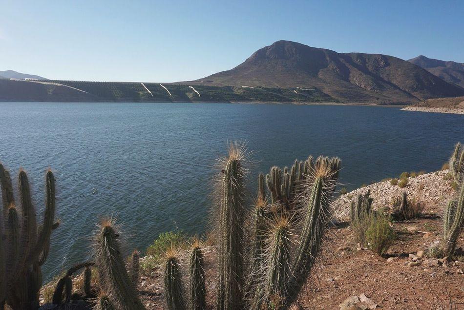 Represa Represas Desierto Cactus Landscape Waterscape Hills Hills, Mountains, Sky, Clouds, Sun, River, Limpid, Blue, Earth