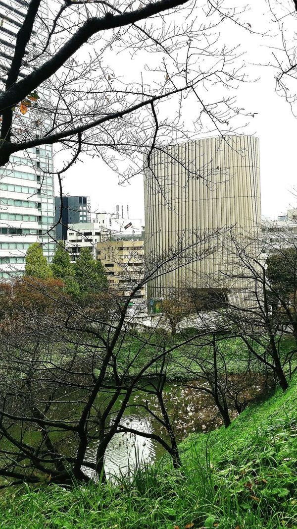 Part of the Moats Surrounding The Imperial Palace Secured Fortifications Trees Nature Tokyo Japan Travelphotography