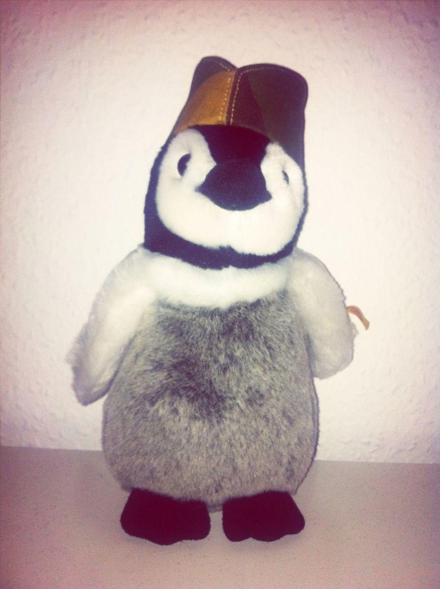 Edwin Penguin Partizan