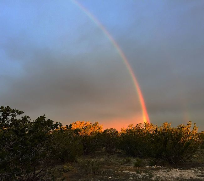 """Pot of Gold in The Junipers"" An early morning rain culminates in a beautiful semi-double rainbow. Rainbow Rainbows MorningRainbow Newmexicophotography NewMexicoTRUE Newmexicoskies"
