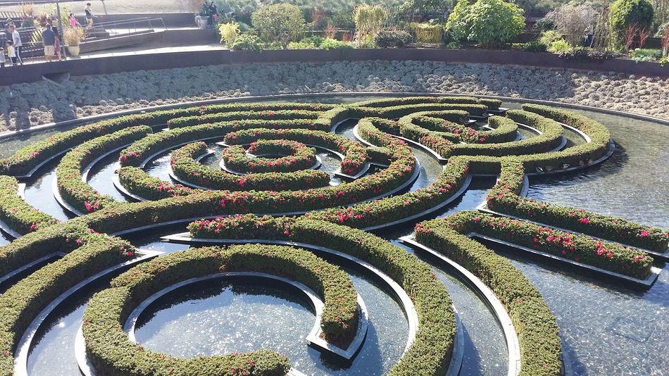 Getty Gettymuseum Garden Maze Water