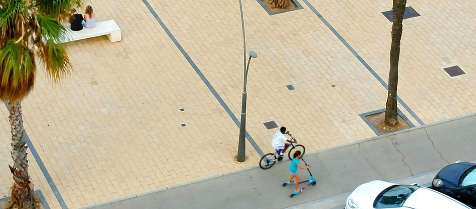 Be Happy Child Playing Movement Studies Palm Gente Vista Aérea Aerial View Aerial Shot Andalucia Spain Street View Streetphotography Childhood SPAIN Palm Trees Corniche Cadiz