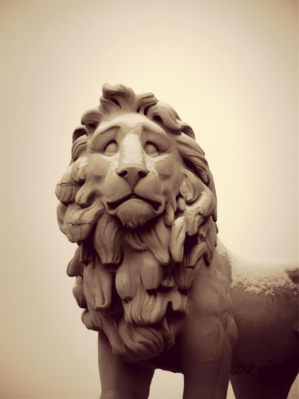 Close-Up Of Sculptor Of Lion