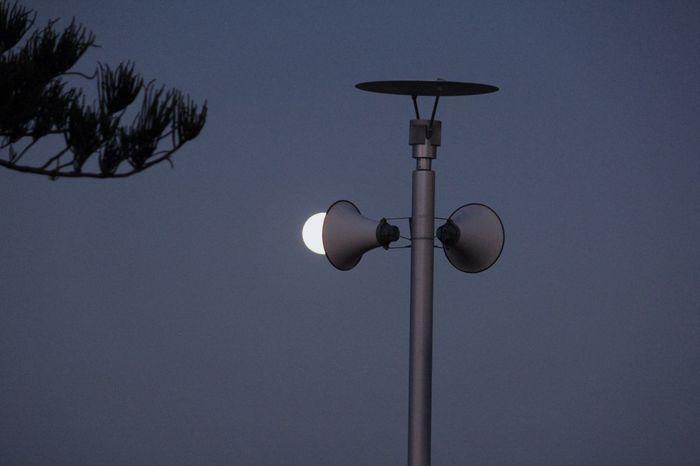 Moon light bulb 🌕