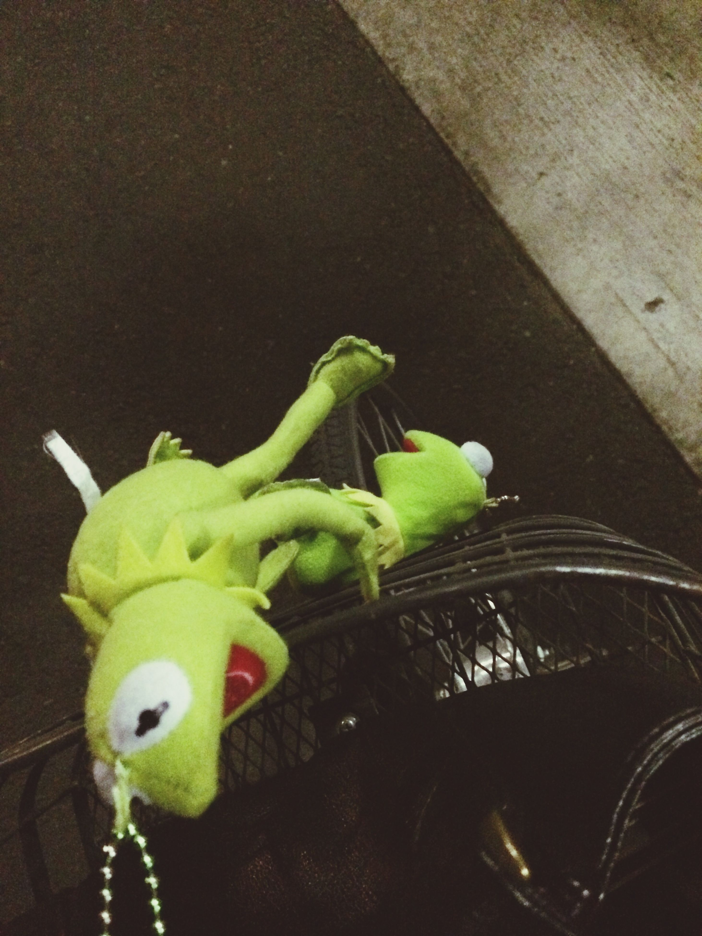 animal representation, indoors, animal themes, toy, green color, bird, close-up, one animal, no people, still life, art and craft, human representation, art, parrot, creativity, high angle view, table, animals in the wild, wildlife, food