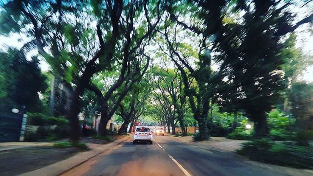 """""""You can't solve your problems on the same level of thinking that you created them"""" - Albert Einstein 👌 . . . Inspired Car Trees Streetphoto Streets Green Driving Beautiful Nostalgia Nature Blurred Photography Smallpeopleinbigplaces Samsung Notbadatall Keeper Instagram Instalike Like4like Follow4follow Watch_this_space Doubletap Be_Awesome"""