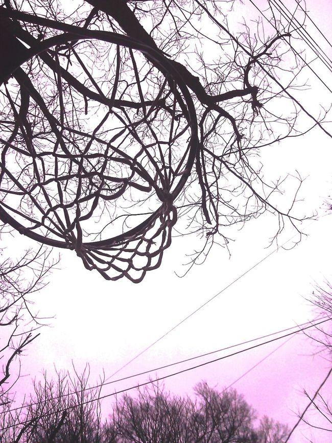 ×Tօժɑվ,հօԹҽ վօմ Ӏíkҽ!× ƒօӀӀօա ʍվ íղŚԵɑցɾɑʍ @niallsfallenangel× Basketball <3 Instagramer Taking Photos Check This Out Hi!