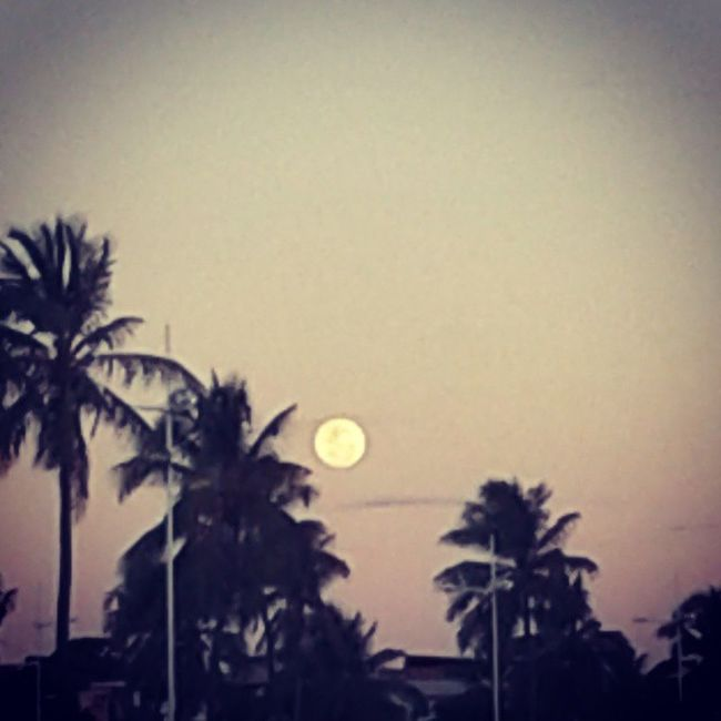 ... Moon Beautiful Lua  Linda perfeita luacheia moonlight