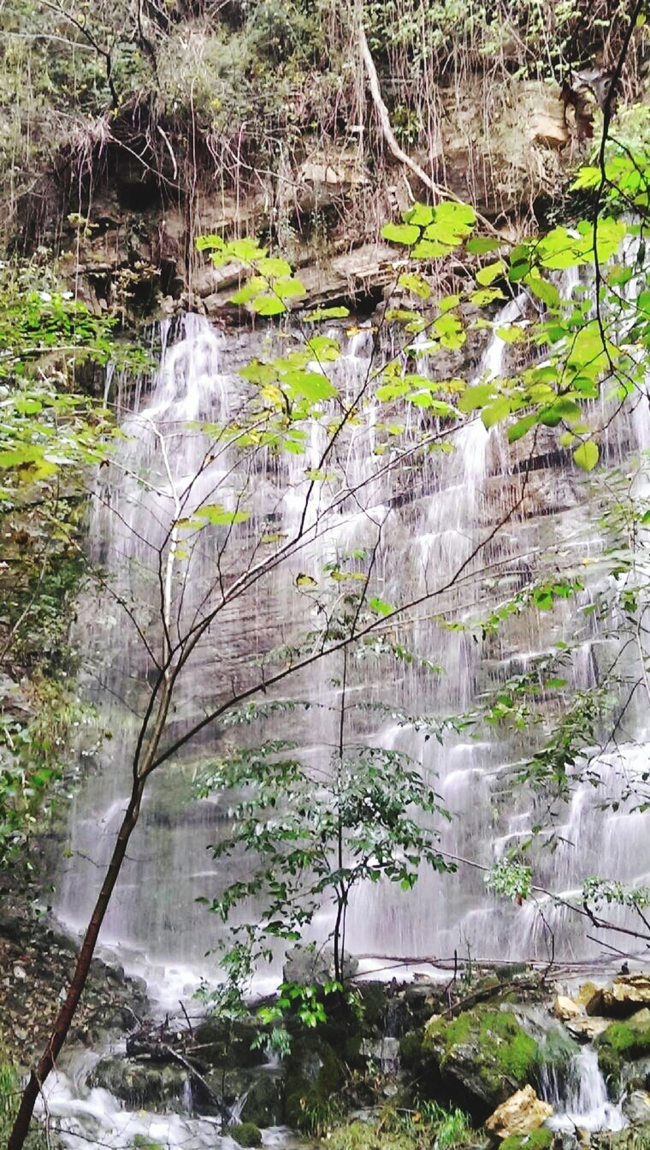 Falling Water Nature Forest Eternity Lombardia Noneedfilter Doyoulikeit? Silence Peace