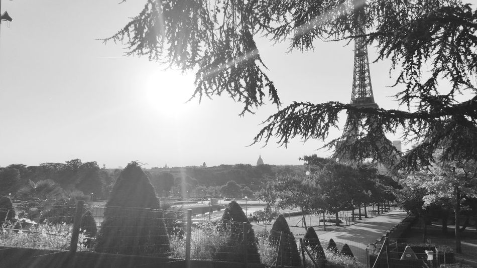 Battle Of The Cities Blackandwhite Capture The Moment City Clear Sky Distant From My Point Of View Morning Light Sunbeam Tour Eiffel Black And White Tour Eiffel, Paris. Tourism Travel Destinations Tree Samsung Galaxy S5