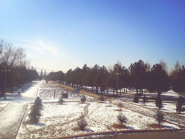 It should be spring already Bishkek Kyrgyzstan Walking Park