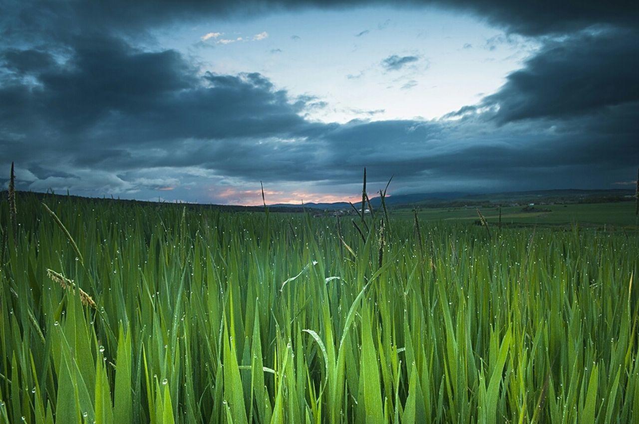 Sunrise Landscape Movilgrafias Alava Alavavision