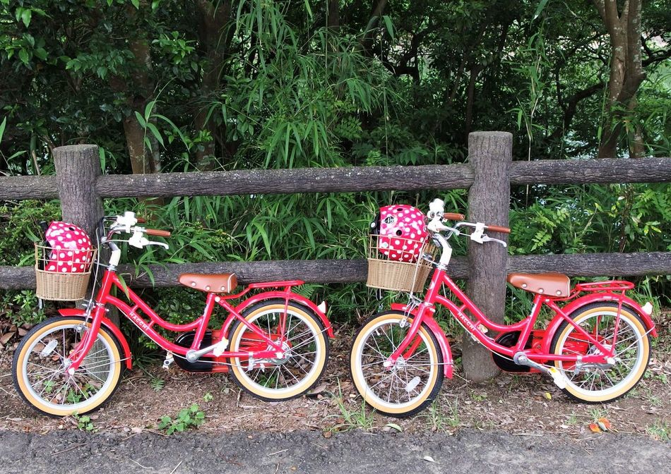 Bicycle Bicycle Basket Bicycle Rack Cycling Kids Bikes Land Vehicle Nature Outdoors Red Transportation TWINS ♥ Let's Go. Together.
