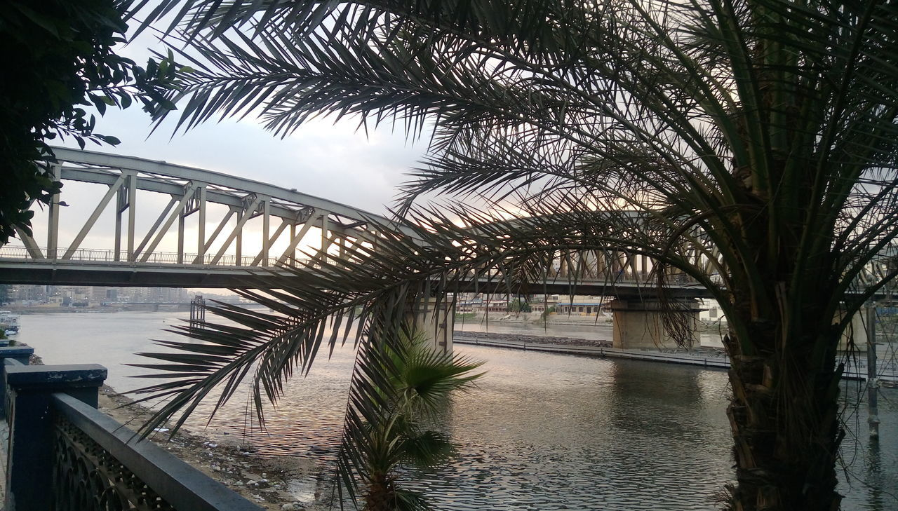 Water Bridge - Man Made Structure Reflection Sky Tree Sunset River Outdoors No People Connection Nature Beauty In Nature Architecture Day Streetphotography Nile River Weekly Welcome Mansoura Built Structure Egypt Urban Skyline Architecture Building Exterior Palm Trees Bridges