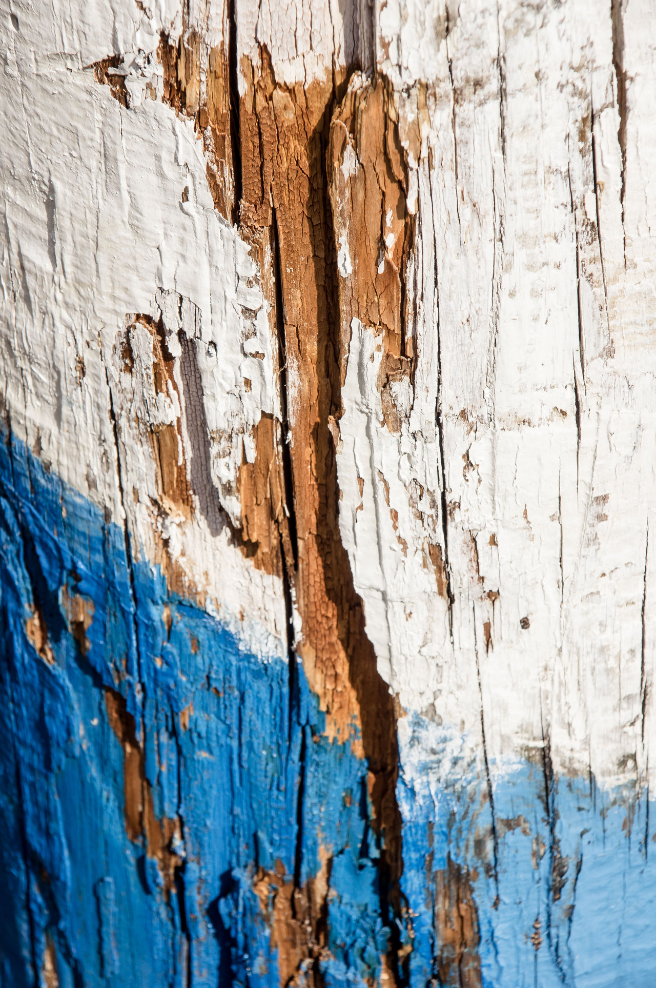 Background Backgrounds Bad Condition Blue Blue Color Close-up Copy Space Day Full Frame Nature No People Outdoors Painting Text Space Texture Textured  Weathered Weathered White White Color Wood Wood - Material Wooden Wooden Background Wooden Texture
