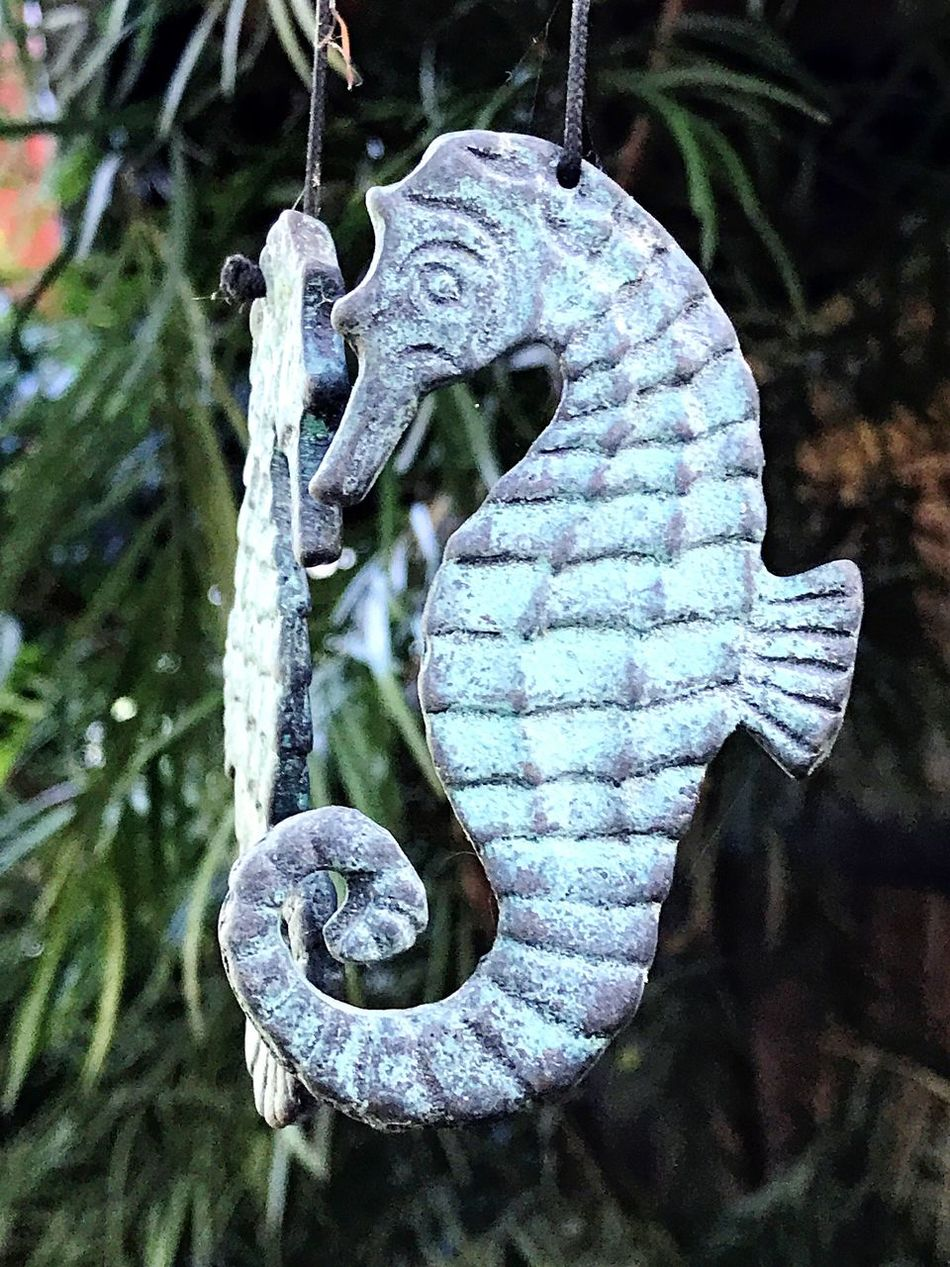 Close-up No People Hanging Outdoors Day Fragility Wind Chimes Seahorse Open Edit Bronze Verdigris