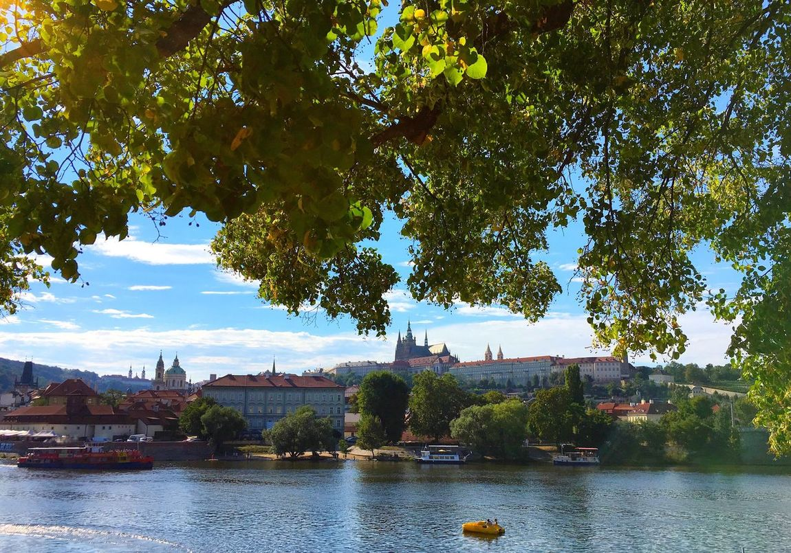 A sunny day in Prague Tree Architecture Water River Sky Day Outdoors Blue Nature Cloud - Sky No People Riverbank Green Color Prague Praha Czech Republic Castle View  WaterBicycles Calmness Calm Water Peaceful