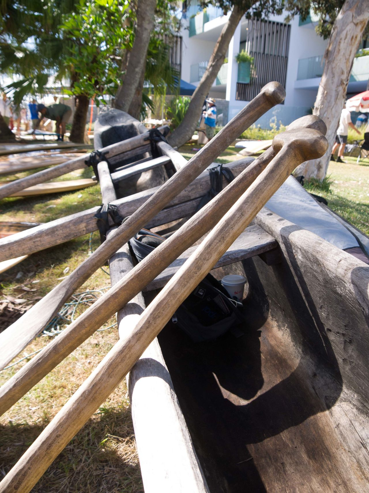 Close-up Day Longboat No People Outdoors Paddles Tree Wood - Material Wooden