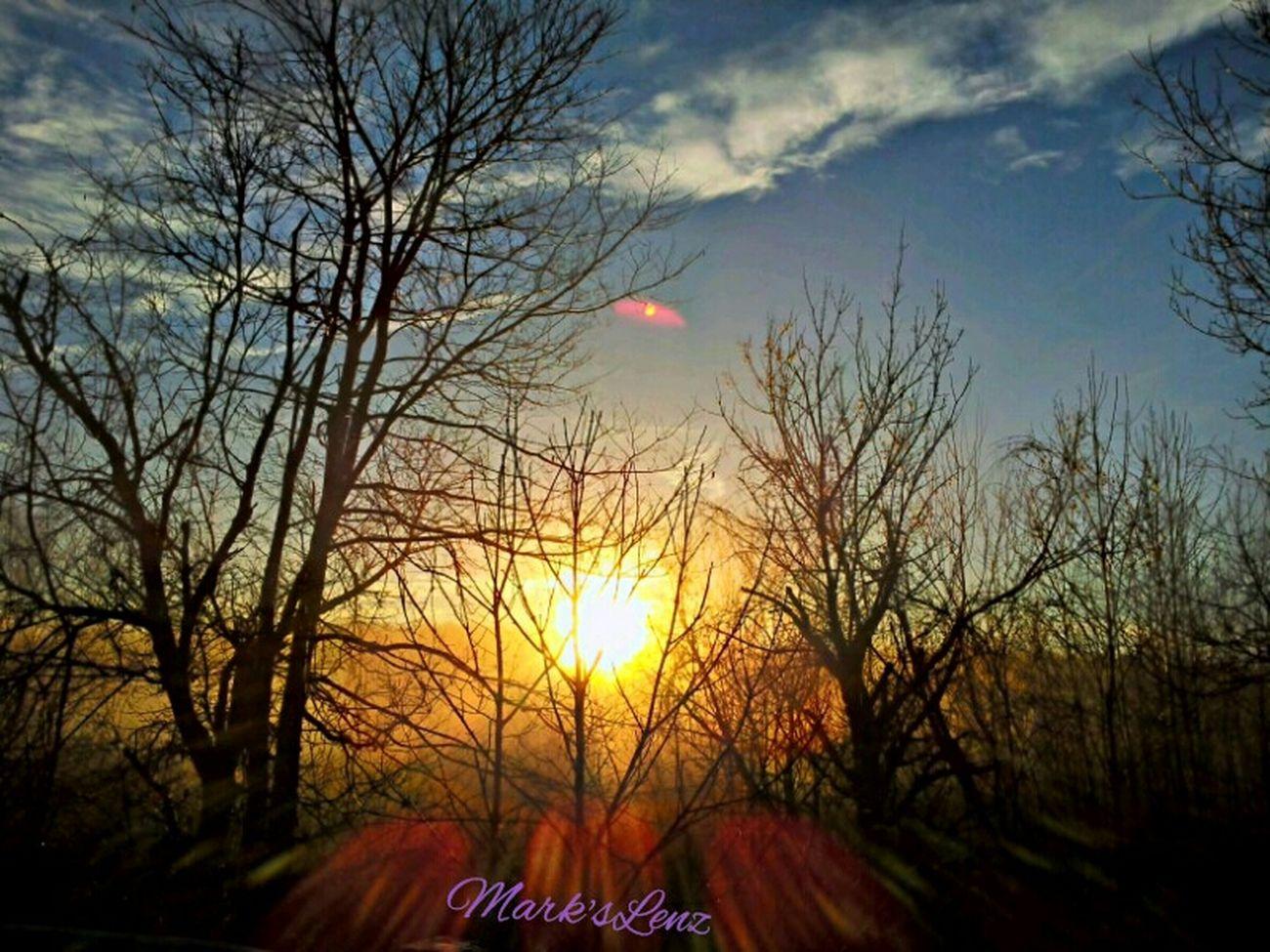 Misty Morning Sunrise Sunshine Sunrise Trees Taking Photos Fotodroiding Andrography Mist Photography Outdoors Droidography Fotodroids Phoneography Andrographer Droidographer Nature