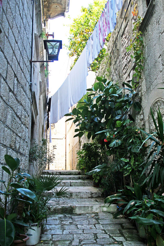 Korcula,details by autumn,Adriatic coast,Croatia,Europe,1 Adriatic Sea Architecture Autumn Building Exterior Built Structure Croatia Culture Day Eu Europe History Korčula Marco Polo No People Outdoors Peljesac Sky Tourism Destination