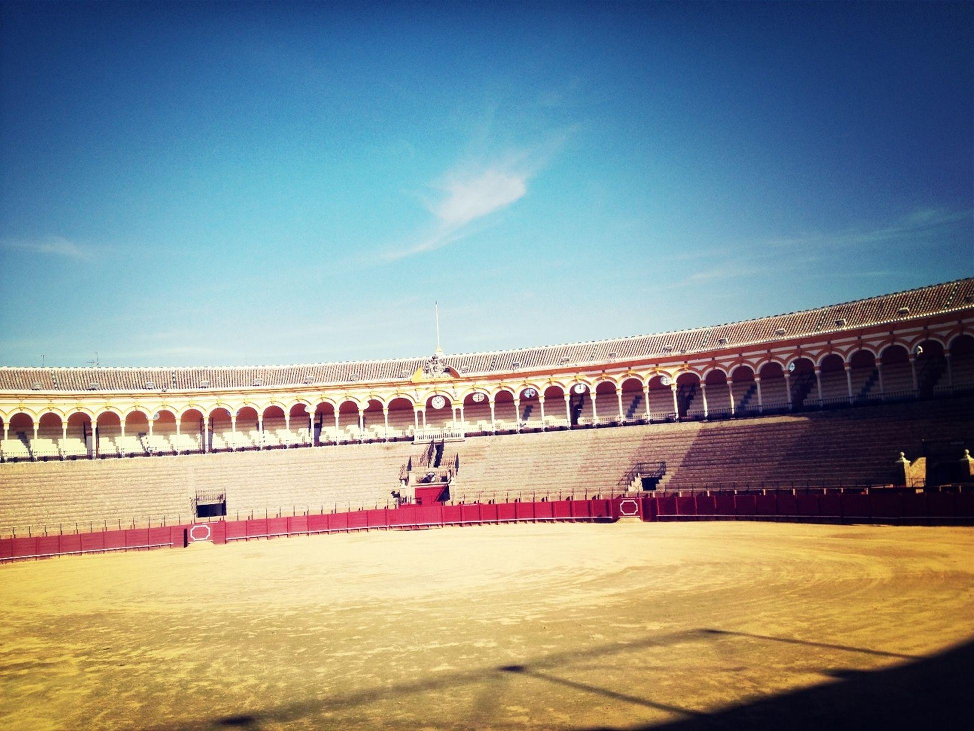 Bull Fighting In Seville