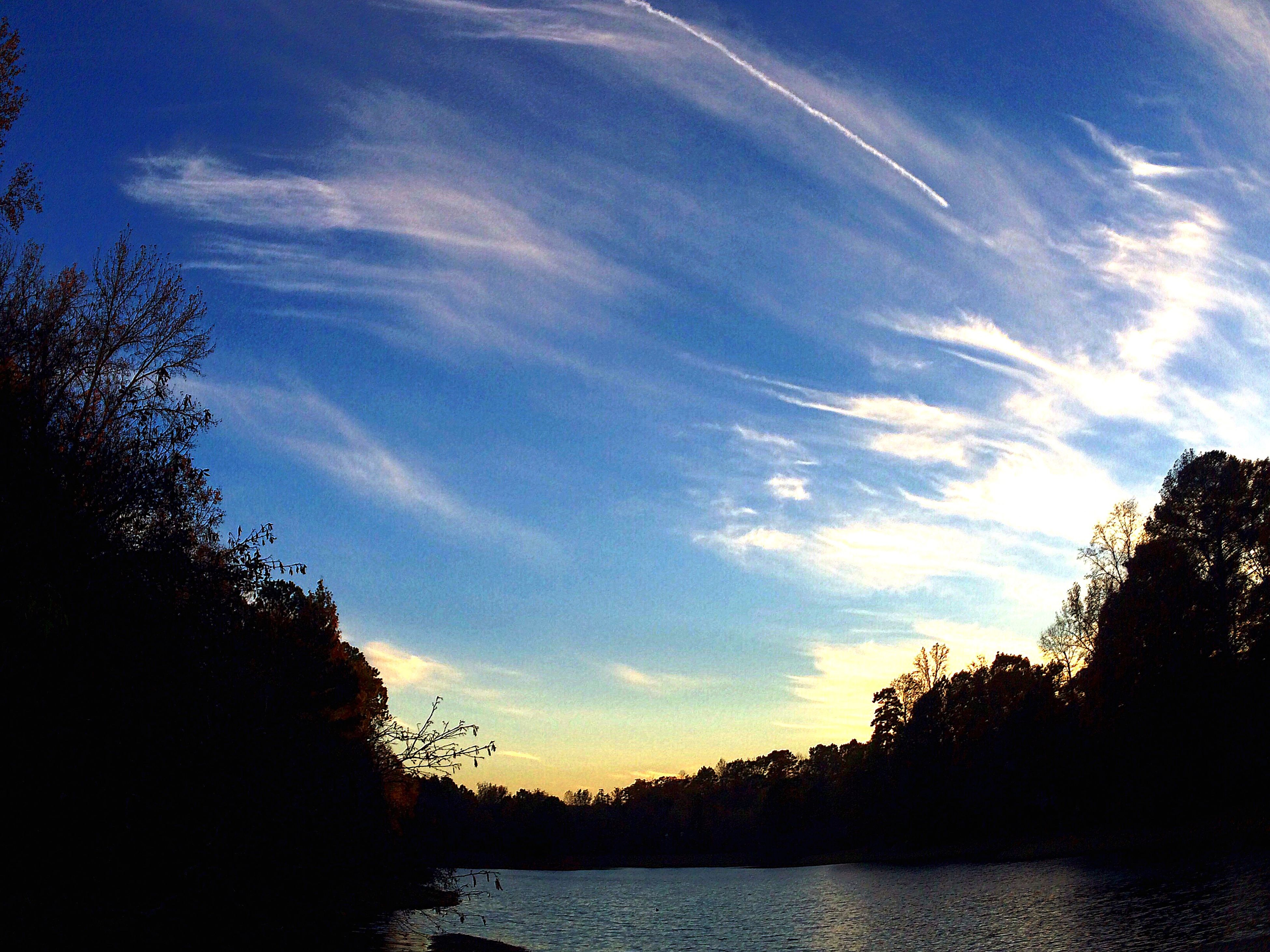tree, sky, tranquil scene, tranquility, silhouette, water, scenics, beauty in nature, cloud - sky, cloud, waterfront, nature, lake, blue, idyllic, growth, river, sunset, outdoors, no people
