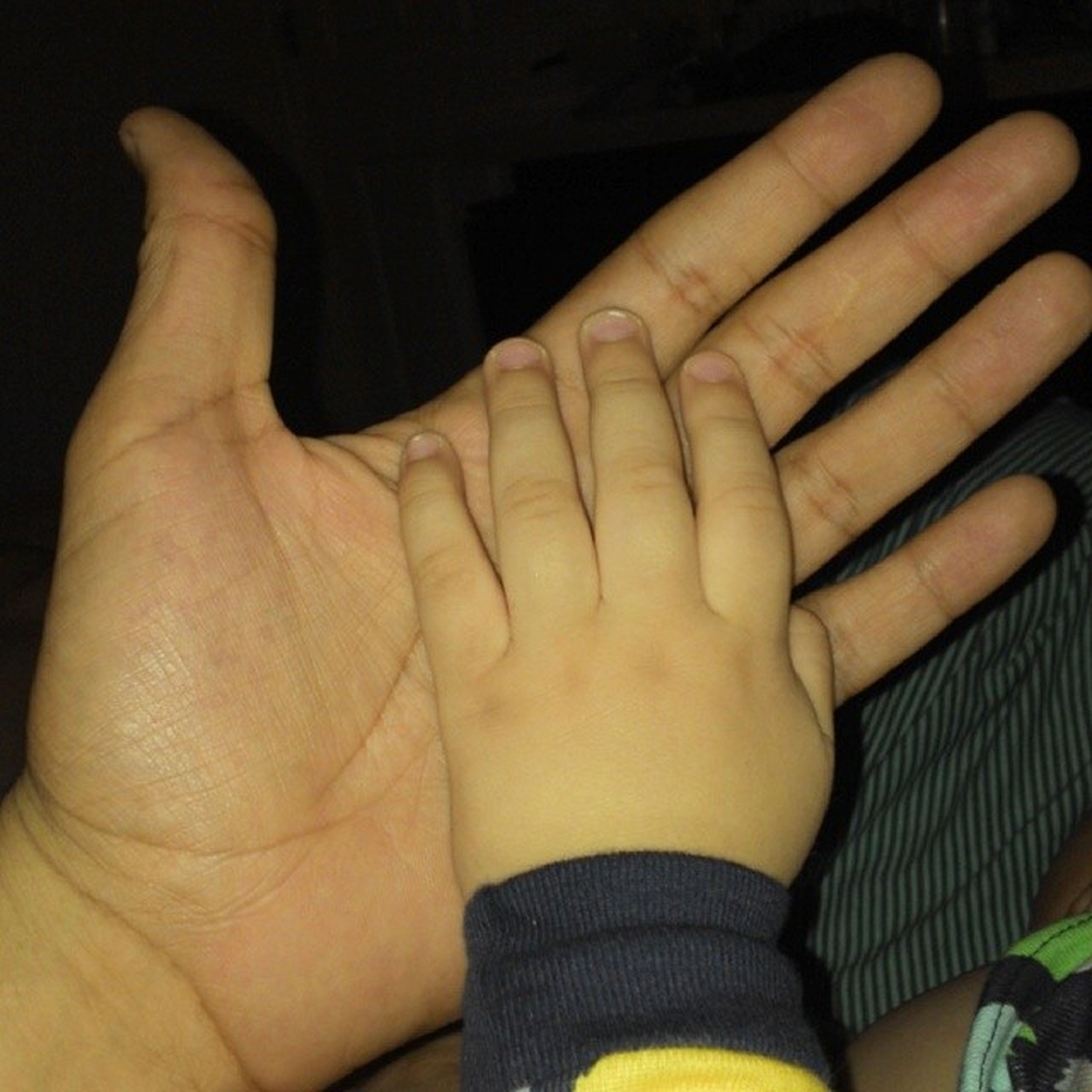 person, lifestyles, part of, love, togetherness, bonding, close-up, leisure activity, human finger, indoors, family with one child, unknown gender, baby, holding hands