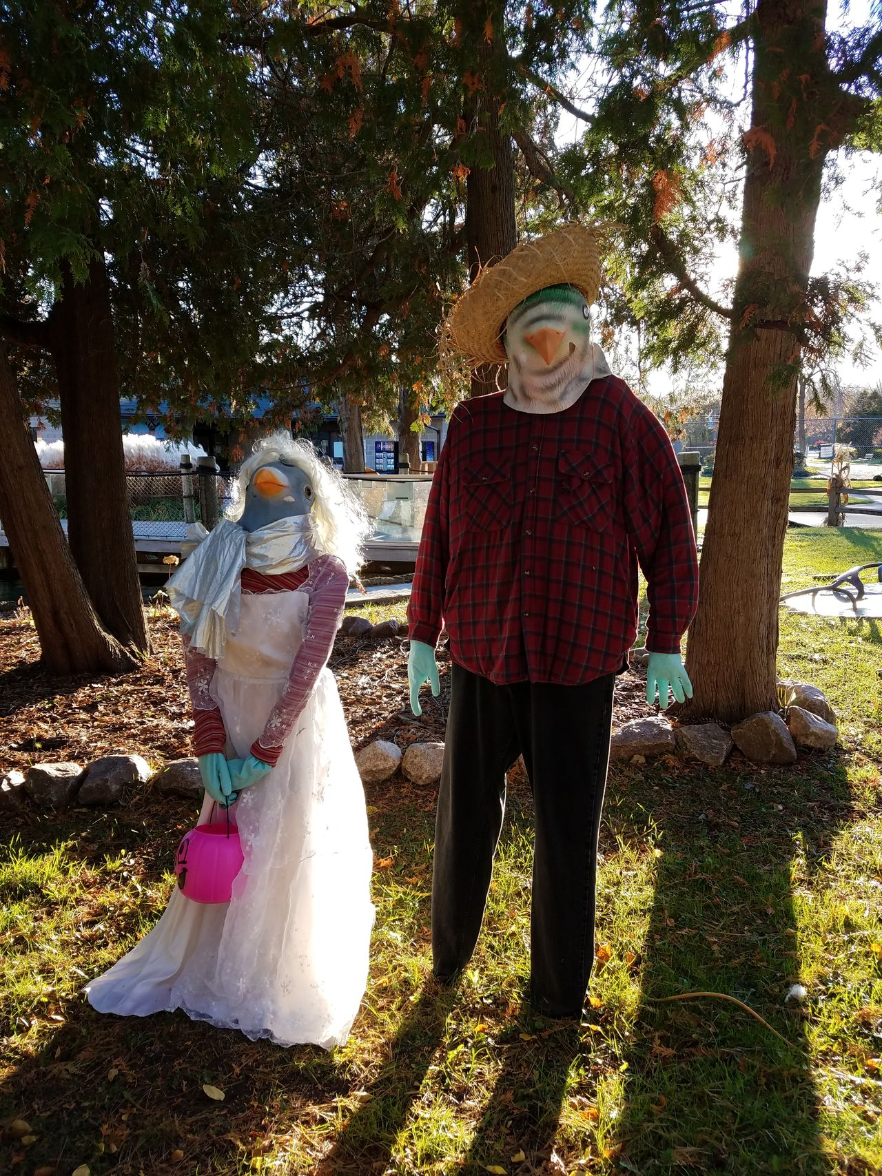 Halloween couple Tree Hat Standing Outdoors Togetherness Costume Halloween Halloween