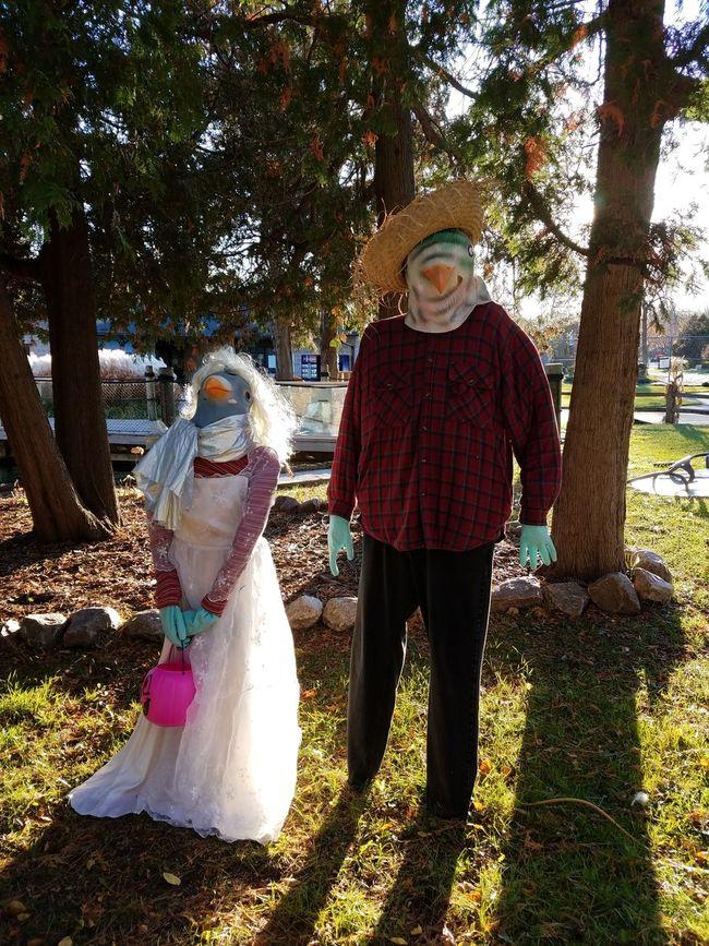 Halloween couple Tree Hat Standing Outdoors Togetherness Costume Halloween Halloween