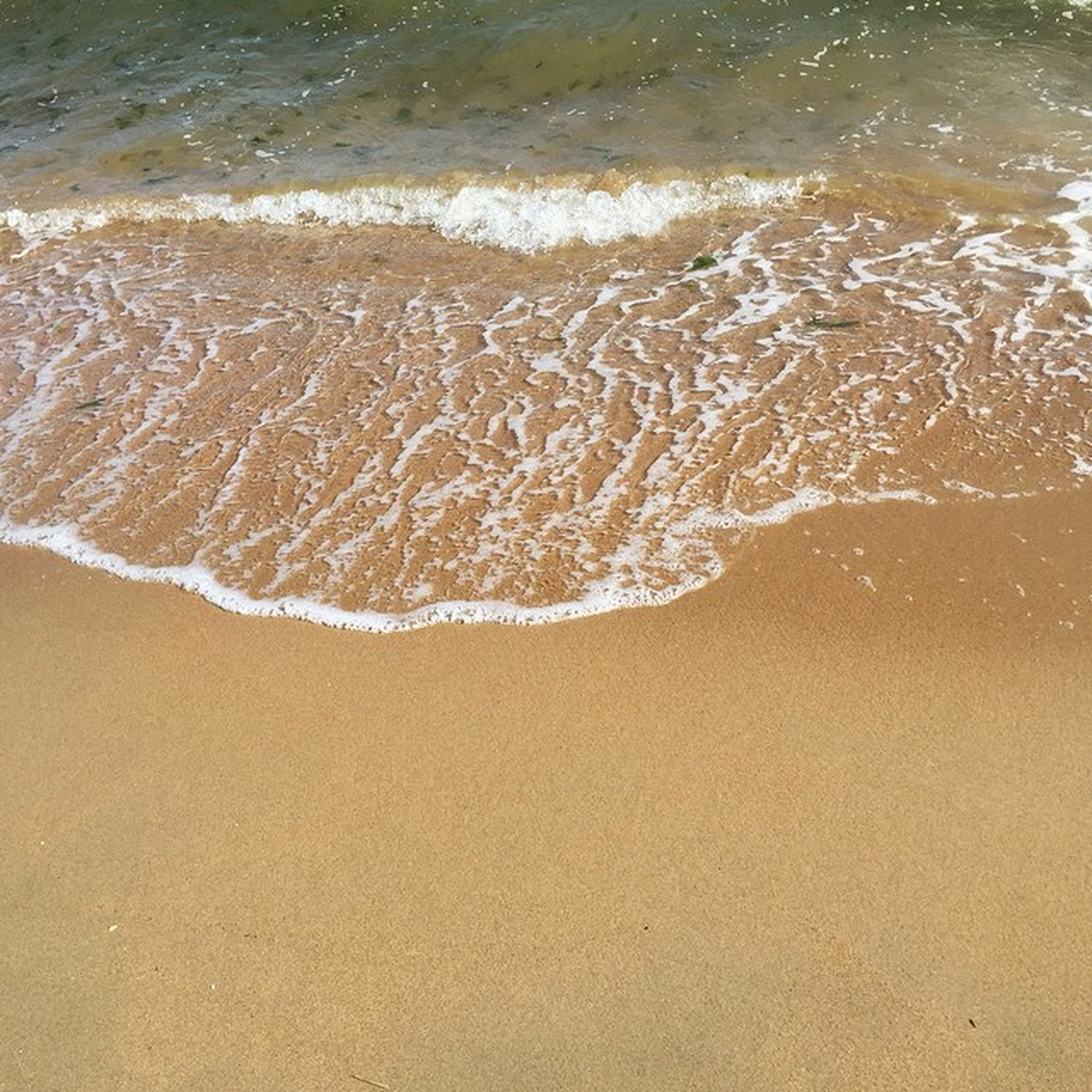 water, beach, sand, sea, shore, wave, surf, nature, tranquility, beauty in nature, wet, rippled, high angle view, sunlight, motion, outdoors, day, scenics, no people, tranquil scene