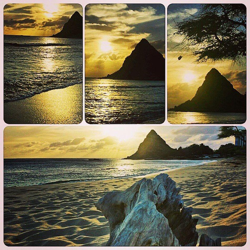 Waianae sunset Tgif Sunset Skyporn Driftwood Golden Sun HiLife Aloha Beautiful Cloudy Cold Epic Westside Makaha  Waianae Oahu Hawaii Epichi ExploreHawaii GodIsGood Mylife Luckywelivehi Rephawaii Roadtrip Shenanigans saltlife samsunggalaxy4