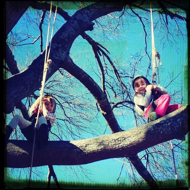 Girls In Trees