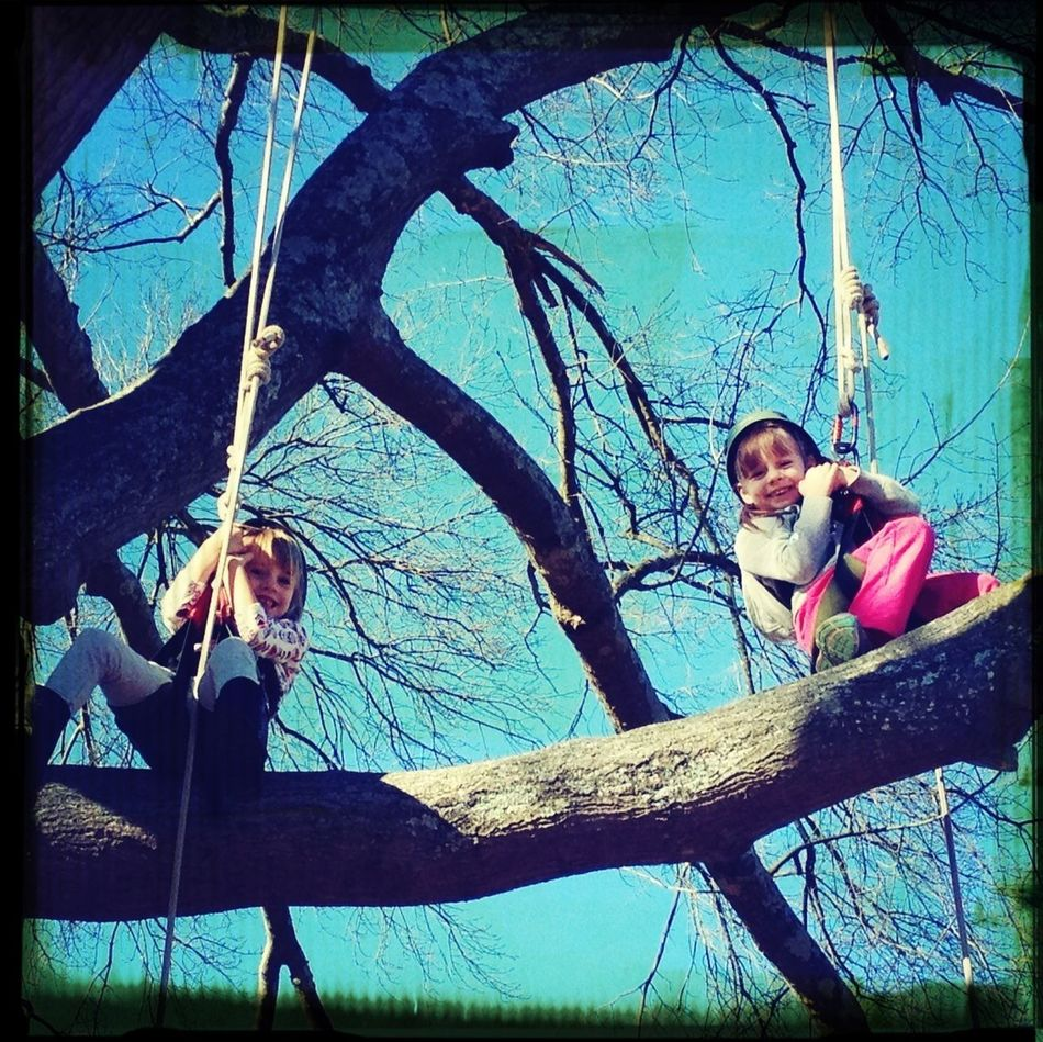 Girls In Trees