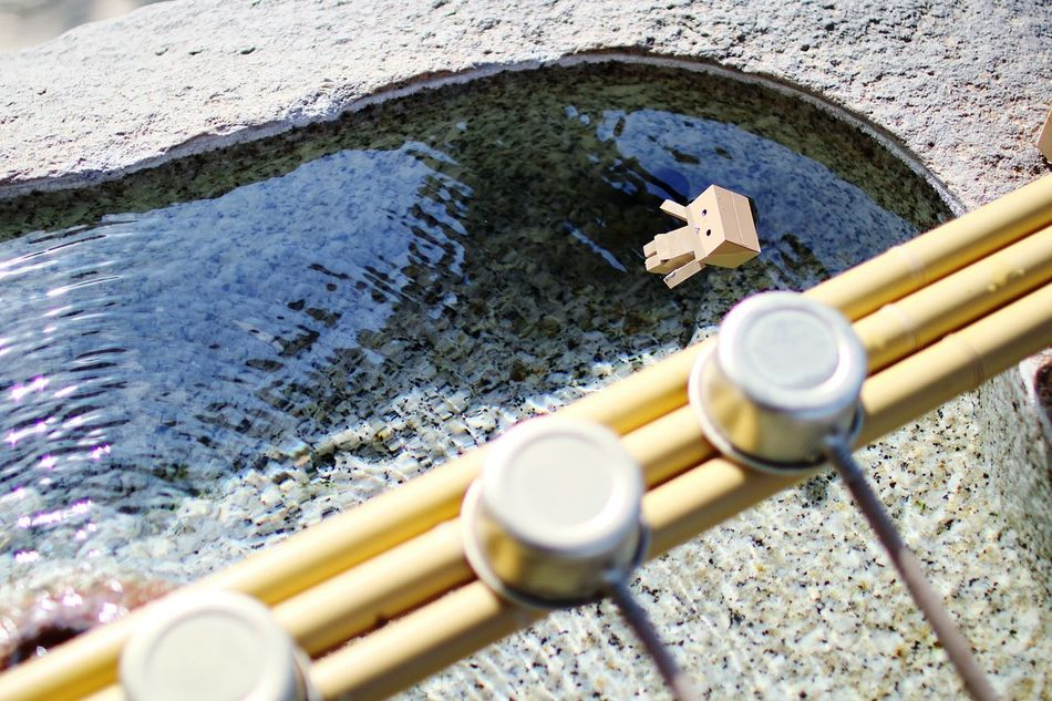 あっ・・・。 Danbo EyeEm Gallery Relaxing Cheese! Japanese Shrine Bath Time