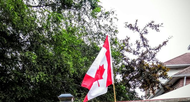 Proudly Canadian Canadian Flag Red And White