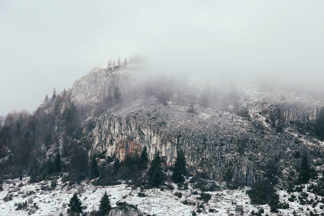 Beauty In Nature Cold Temperature Day Fog Foggy Forest Landscape Landscape_Collection Landscape_photography Mountain Nature No People Outdoors Pinaceae Pine Woodland Rock Rocks Scenics Sky Sky And Clouds Snow Tranquility Travel Tree Winter