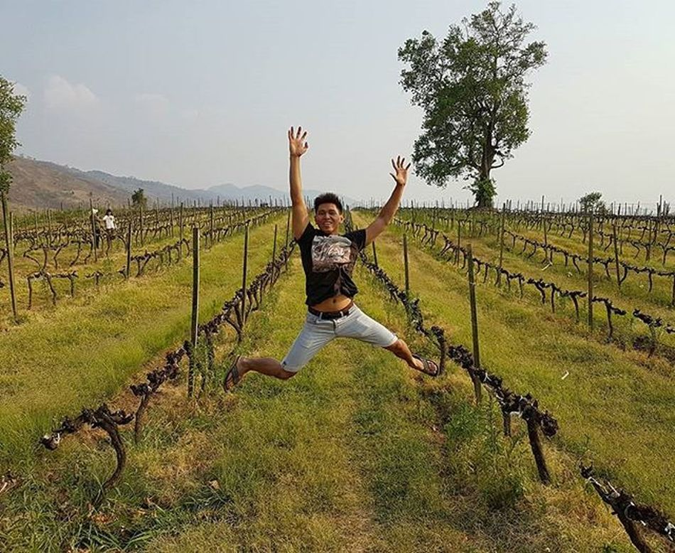 Winegarden Taunggyi Winefarm Grapefarm Grapeplant AOV Igersmyanmar Instagood Instagram Grape Wine Asiaonetravelsnaps Artofvisuals Jumpman Jump Jumping Myanmar Burma Yourworldgallery