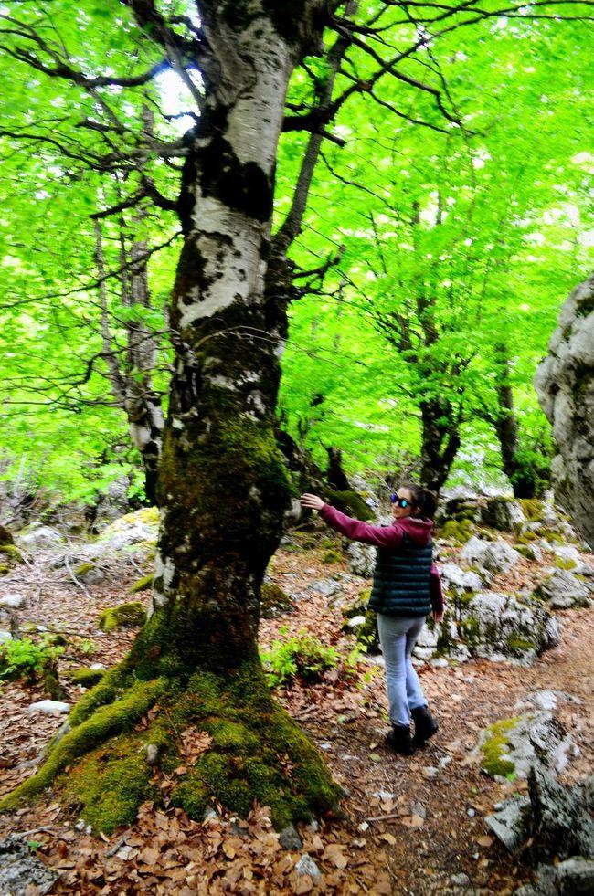 Wonderland Greenmountain Wonderful Day Taking Photos Enjoying Life Beautiful Nature Valbone