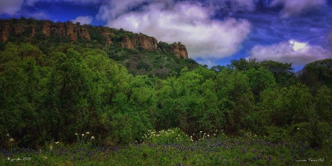...across Texas 152 NEM GoodKarma NEM Clouds EyeEm Best Shots Where I'd Rather Be... NEM Landscapes EyeEm Nature Lover Landscape_Collection NEM Submissions AMPt_community Flower Porn