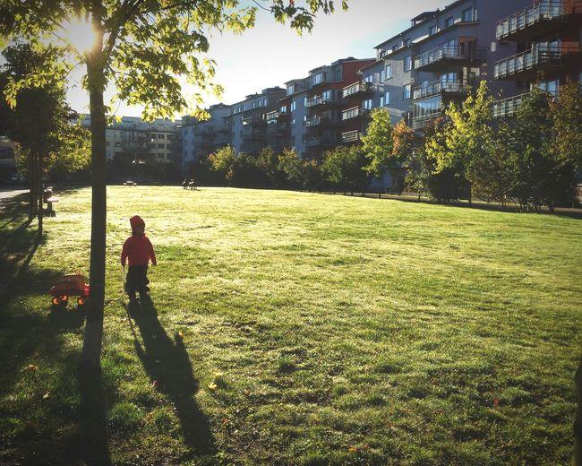 Morning walk. On A Stroll Sun Shadow Bright Lights Kidsphotography