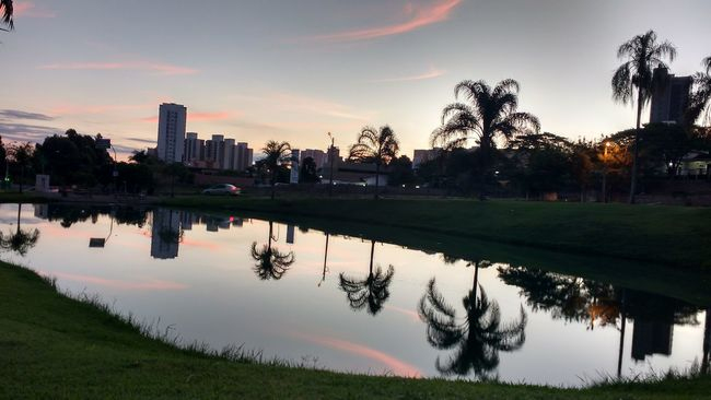 Reflection Water Mirror Effect Trees Mirrortree Skypinkblue Pinksky Sunset IndaiatubaCity Indaiatuba Piccells Meu Olhar Meu Olhar Indaiatuba Prisma Nature Colors Fotodecelular