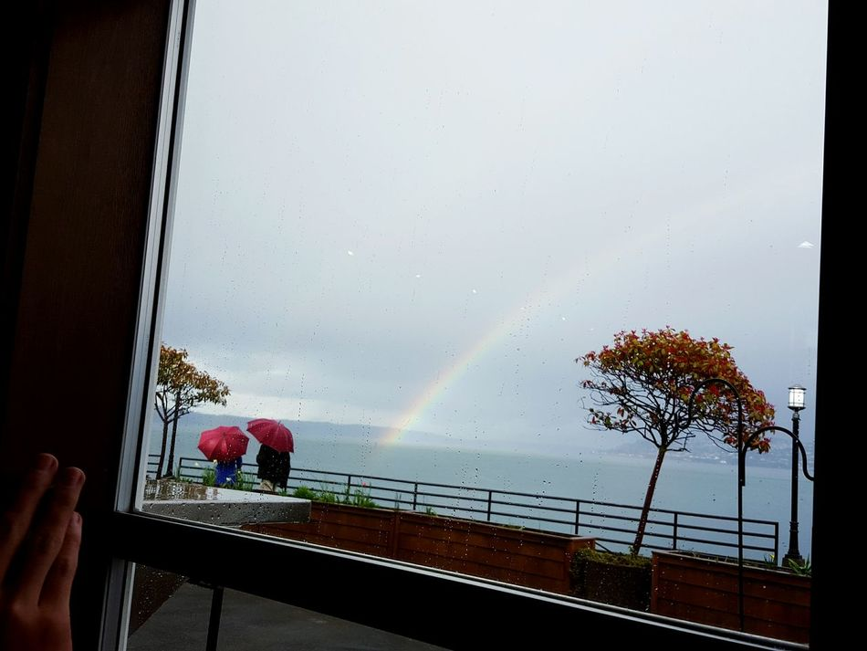 Looking out, feeling lucky. Rainbow Stormy Weather Pnwcollective Washington Puget Sound Mother And Son Looking Out Of The Window Redumbrella Mytown Tacoma_WA Ttown Lucky Rain