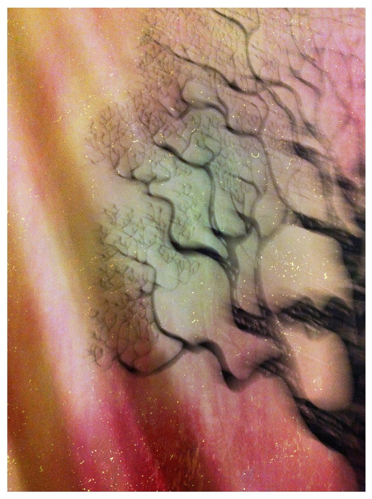 my tapestry My Tapestry